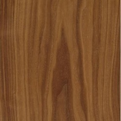 American Black Walnut (Crown Cut)