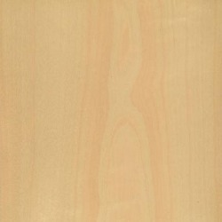 Birch Veneer (Crown Cut)