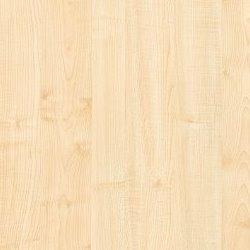 Formica Clear Maple - F3855