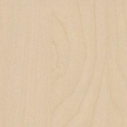 Polyrey Erable Blanc - E009
