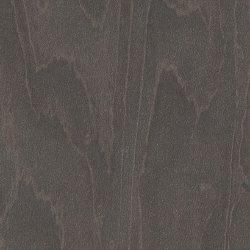 Polyrey Erable Cendre - E040