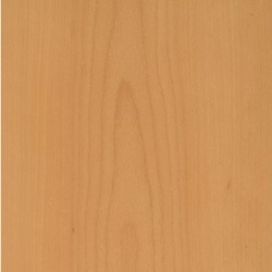 Steamed Beech Veneer (Crown Cut)
