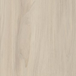 WHITE CAPE ELM - H3760 ST9