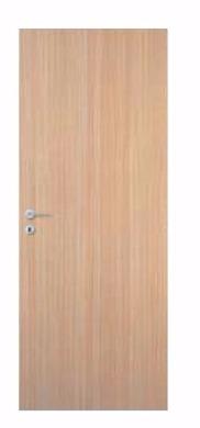 Paint Grade Veneer Door